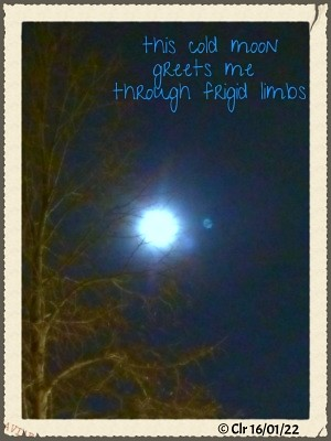 cold moon january 22