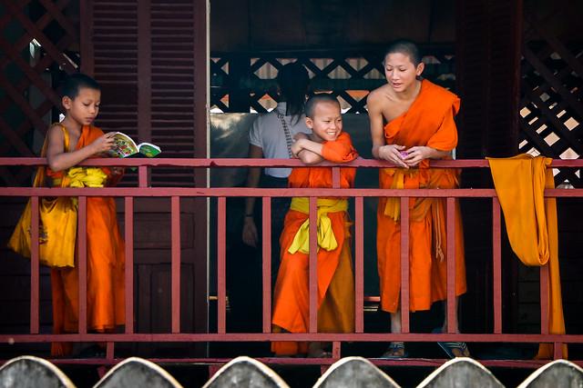 Young Buddhist monks in the school, Luang Prabang, Laos ルアンパバーン、少年僧たちの学校