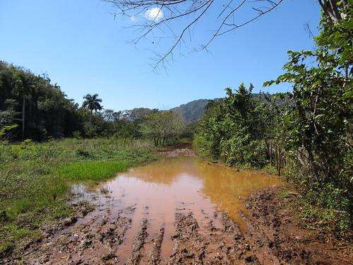 Parc National de Viñales: la flaque qui a bien failli nous faire faire demi-tour...