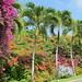 St. Lucia - The Grande