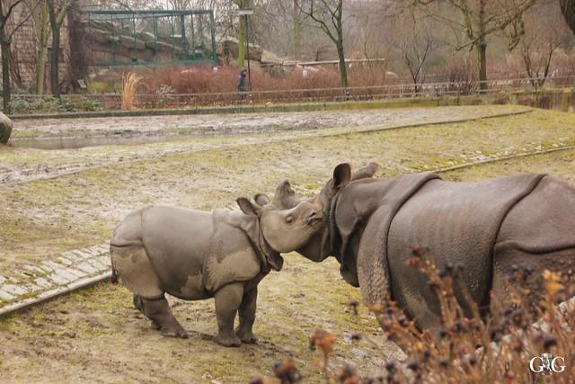 Wasserspaß für Tonja+Wolodja Tierpark 06.03.201658