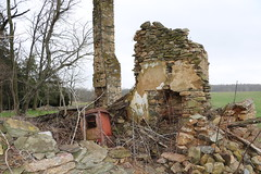 Ruins of a cabin at Old Welbourne