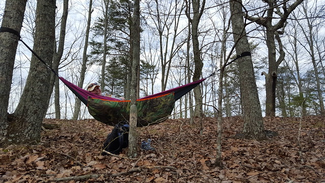 Rachel Hammocking