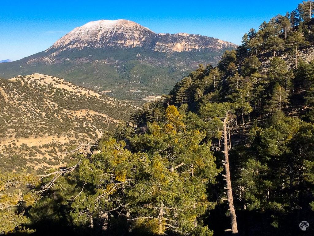 Bonita la Sagra enmarcada con los pinos de Sierra Seca