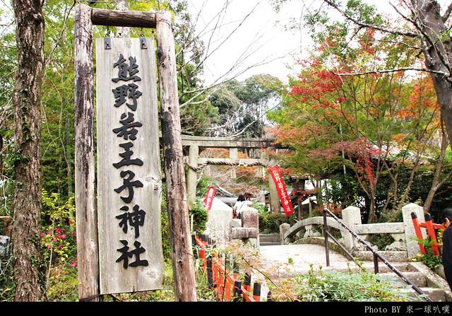京都-哲學之道06
