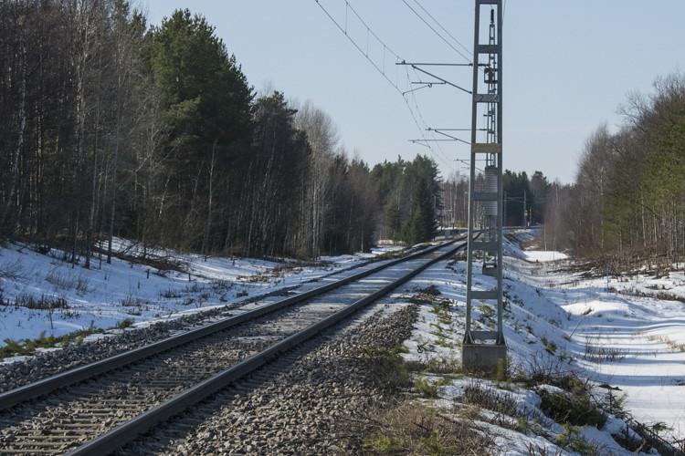 pattijoki1