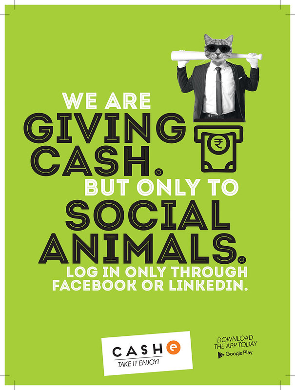 We are are giving cash but only to social animals