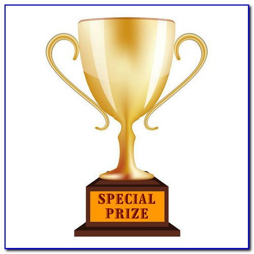 special prize