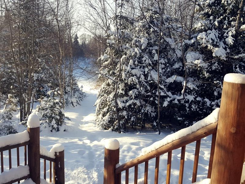 Au Chalet en Bois Rond snow