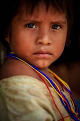 Indigena Kogui