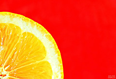 Lemon-Vibrant Minimalism-MM