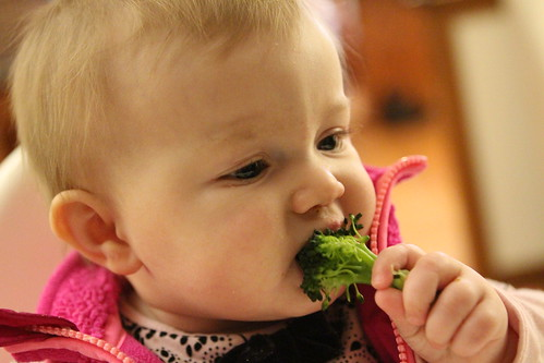 Josie's First Broccoli