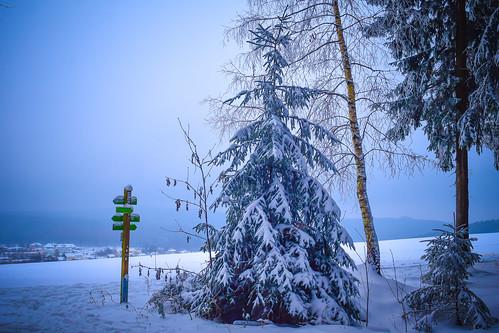 Winter 2016 - Winterland Erzgebirge