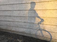 Cyclist Emerging