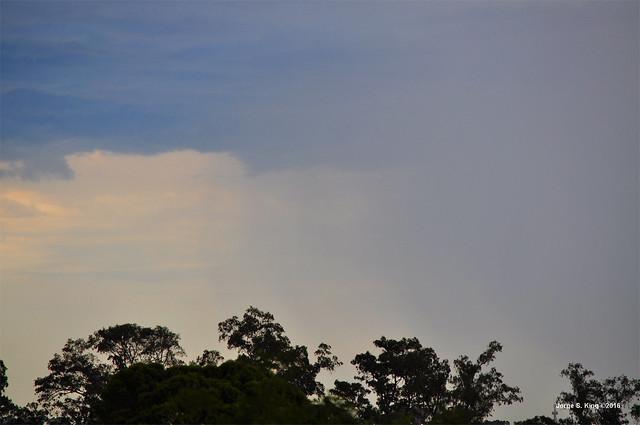 Lluvia mañanera de bienvenida