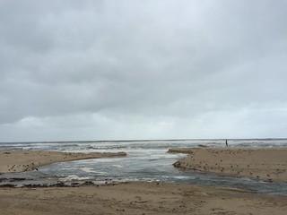 Image of Praia Miramar. praia portugal nova de do d ponte vila porto da gaia félix pedra miramar são luiz marinha norte senhor granja cais luís capela madalena i canidelo arcozelo gulpilhares
