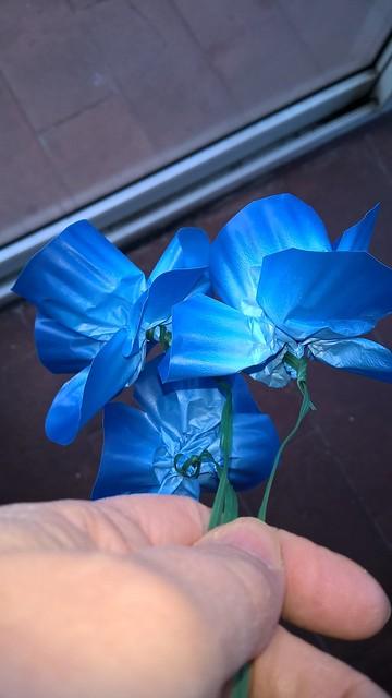 fiori blu plastica 3