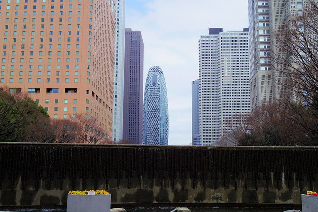2016年3月13日新宿中央公園-8