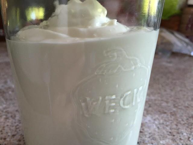 Yogurt freshly made