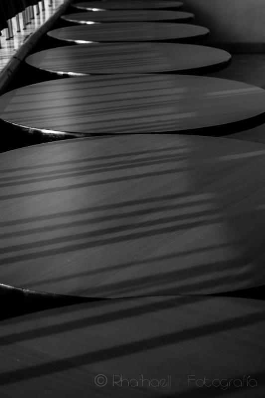 Blanco y Negro 2016-55