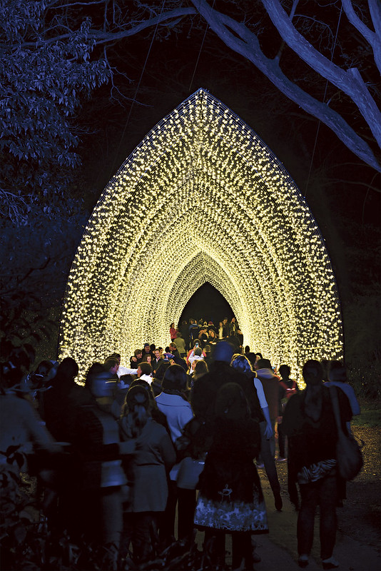Royal Botanic Garden Sydney, Cathedral of Light by Mandylights