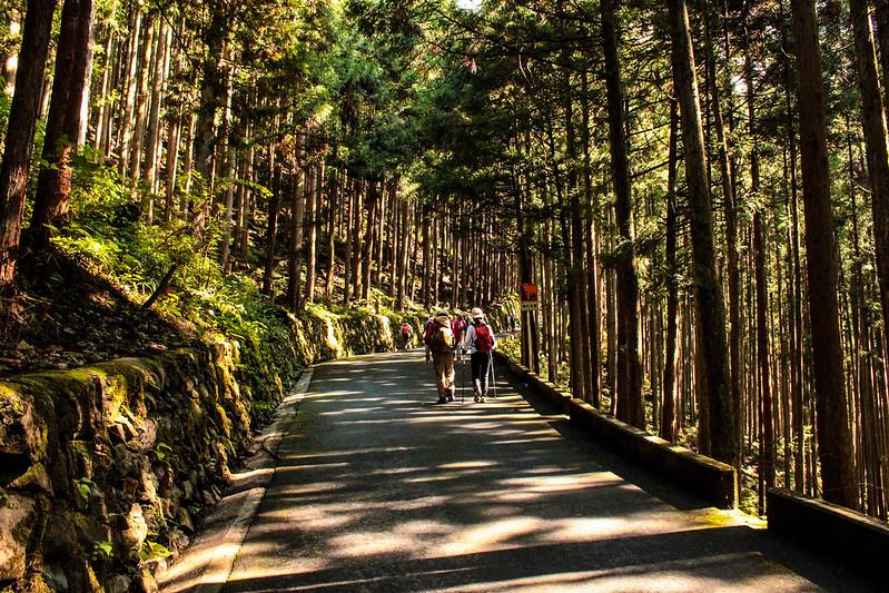 20101023-川苔山-0009.jpg