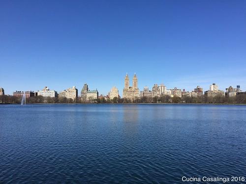 2016 04 15 035 Central Park CuCa