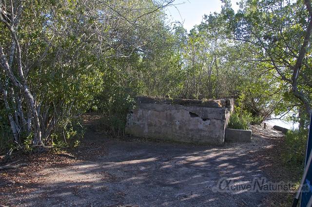 view 0000 Everglades, Florida, USA