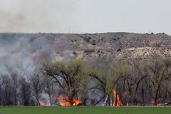 Montana Burning