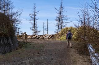 未舗装の林道から石丸峠への標識