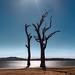 Luminosity by Bruce_Hood