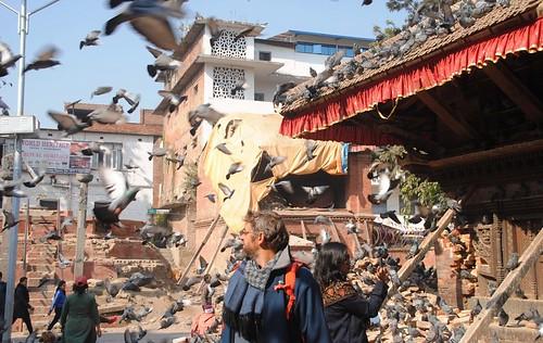 156 Katmandu (54)
