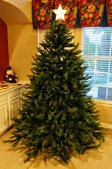 2014-11-30 STAR-Christmas tree - DSC05190