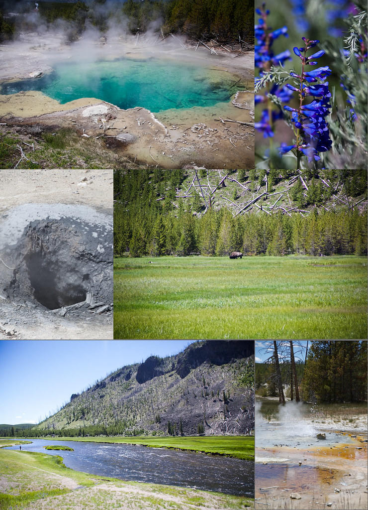 Scenery in Yellowstone
