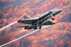 McDonnell Douglas F/A-18 Hornet during AXALP 2015 by The best from aviation