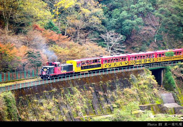 保津霞小火車20
