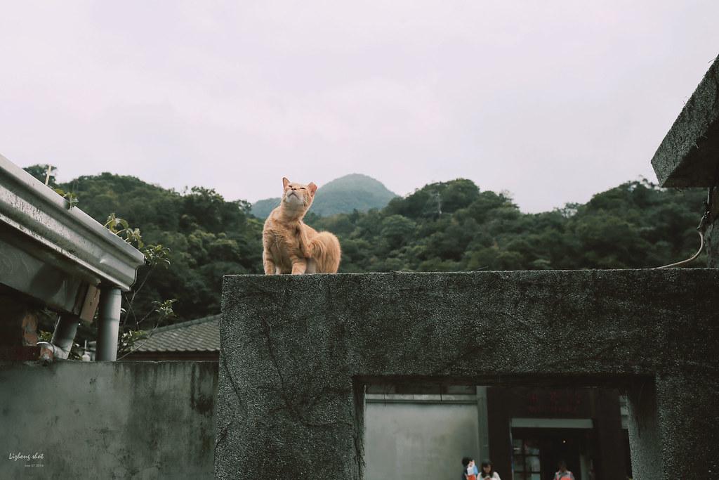 猴硐煤礦博物館的悠遊實紀