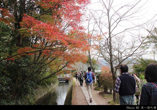 京都-哲學之道22