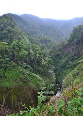 TORO AMARILLO, COSTA RICA - Rio Toro/ ТОРО-АМАРИЙО, КОСТА-РИКА - река Торо