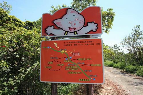 台東縣大武鄉山豬窟休閒農場周邊景點吃喝玩樂懶人包 (2)