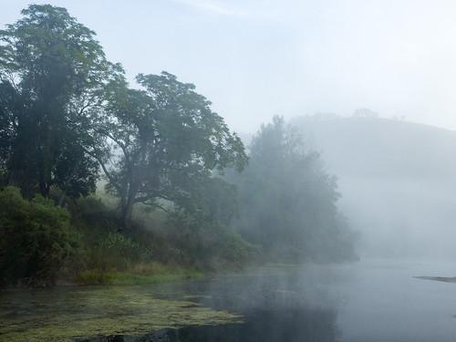 Morning at the Barnard River
