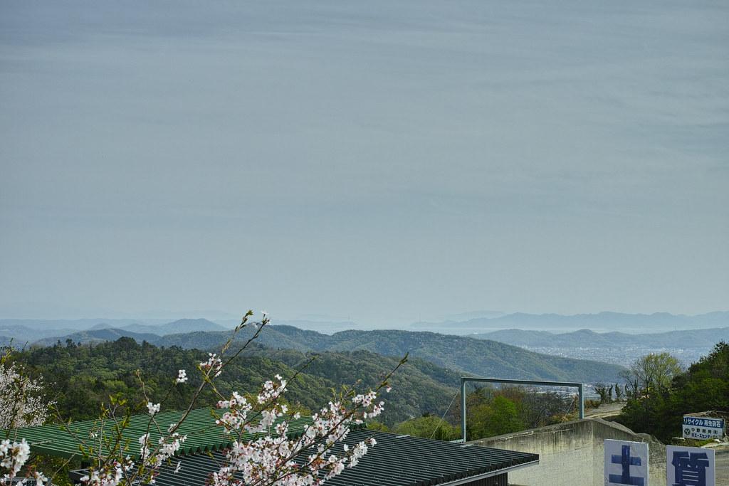 金山からの眺め