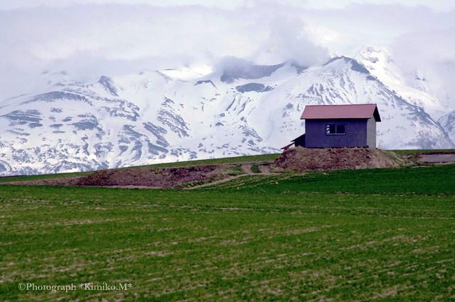 十勝岳と赤い屋根の小屋2