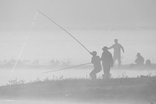 Pescadores de sueños (1)