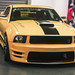 PREDATOR FACE- YELLOWMUSTANG