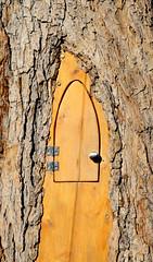 Door on Tree