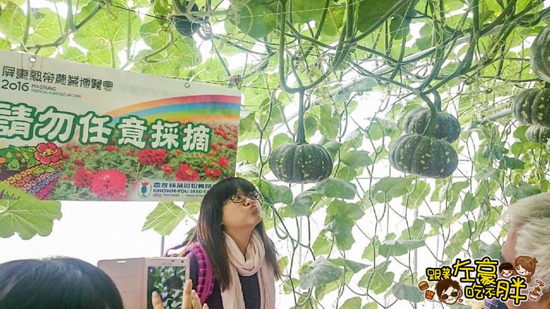 屏東熱帶農業博覽會 _2926