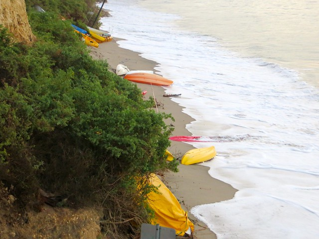 kayaks on the move