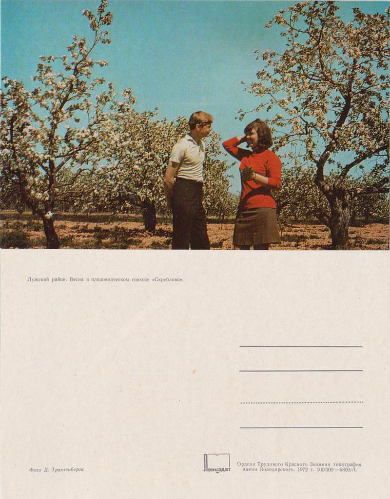 1979《列宁格勒州各地》明信片12