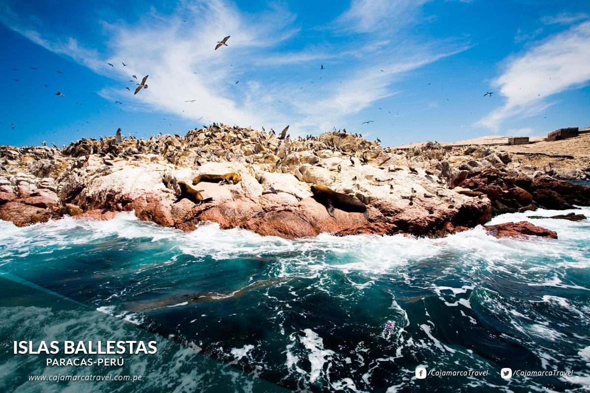 Formaciones rocosas que albergan una importante fauna marina.